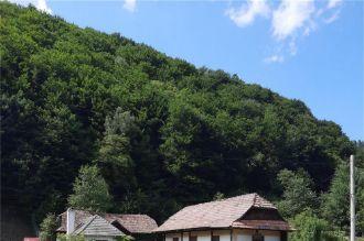 Vand casa Poiana Sarata