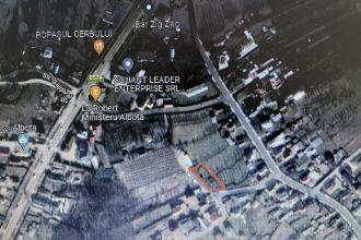 vand casa in Albota /Arges 2 camere modeste si 700 mp teren la asfalt